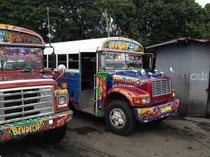 Bus Culture